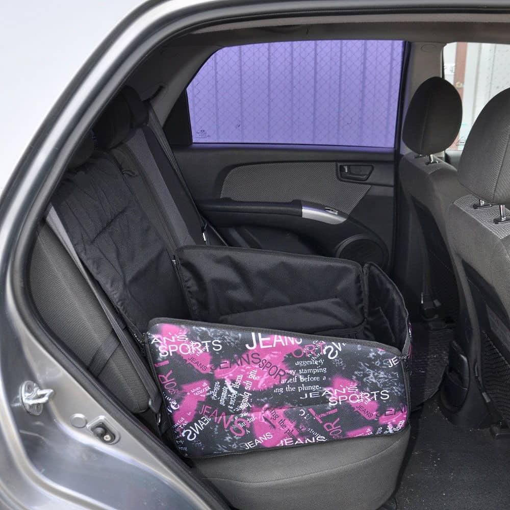 сцепление лейк на заднем сиденье автомобиля фото беларусь даже